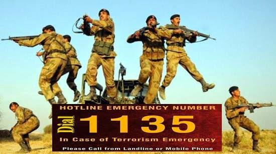 1135 helpline