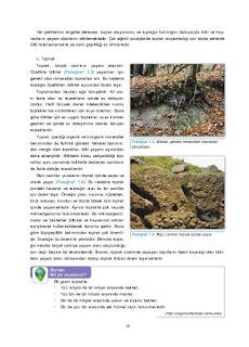 11. Sınıf Coğrafya Ders Kitabı Cevapları Gün Yayınları Sayfa 15