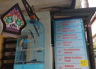 Tour Travel Semarang Jogja