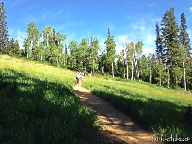 Hiking the Red Cloud Trail, Deer Valley Ski Resort