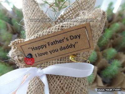 Babalar Günü Fidanı Hediyesi 2