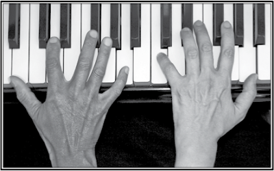 African American Composer Initiative News: Concerts Jan. 26 & 27, 3 PM