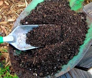 Sukses Pengolahan Limbah Organik Jadi Kompos