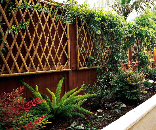 trellis design ideas wall mount trellises - Trellis Design Ideas