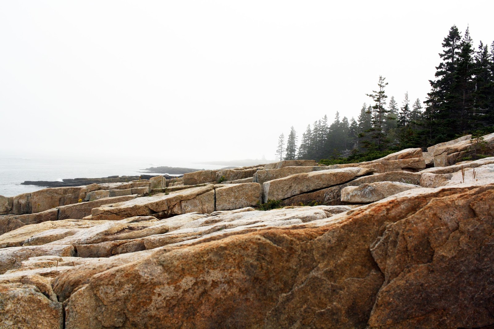 Schoodic Peninsula Acadia National Park
