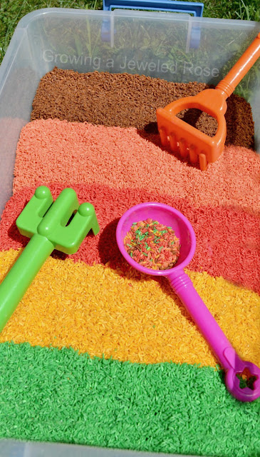 Make your own sensory rice for Fall using this EASY method.  {Rice makes a great play material for kids and is way less messy than sand}