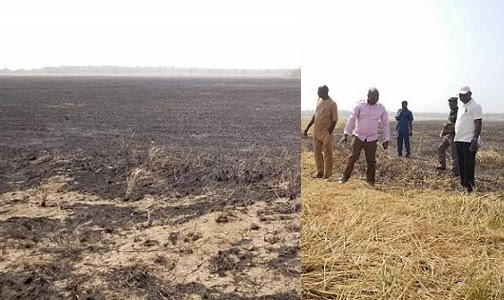 JUST IN: Fear Grips Akwaibom Govt As Herdsmen Set Ortom's Rice Farm Ablaze