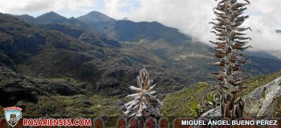 El Humboldt dio concepto favorable al Parque Natural Regional Santurbán | Rosarienses, Villa del Rosario