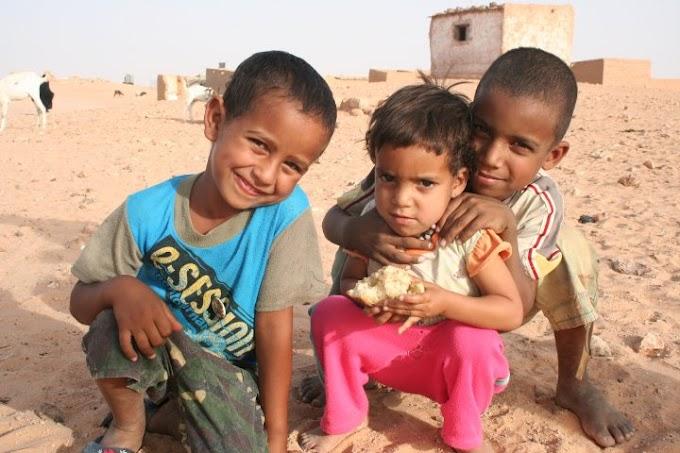 Se buscan familias españolas para acoger a niños saharauis durante el verano.