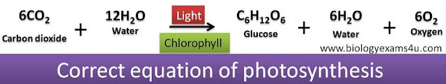 correct balanced equation of photosynthesis