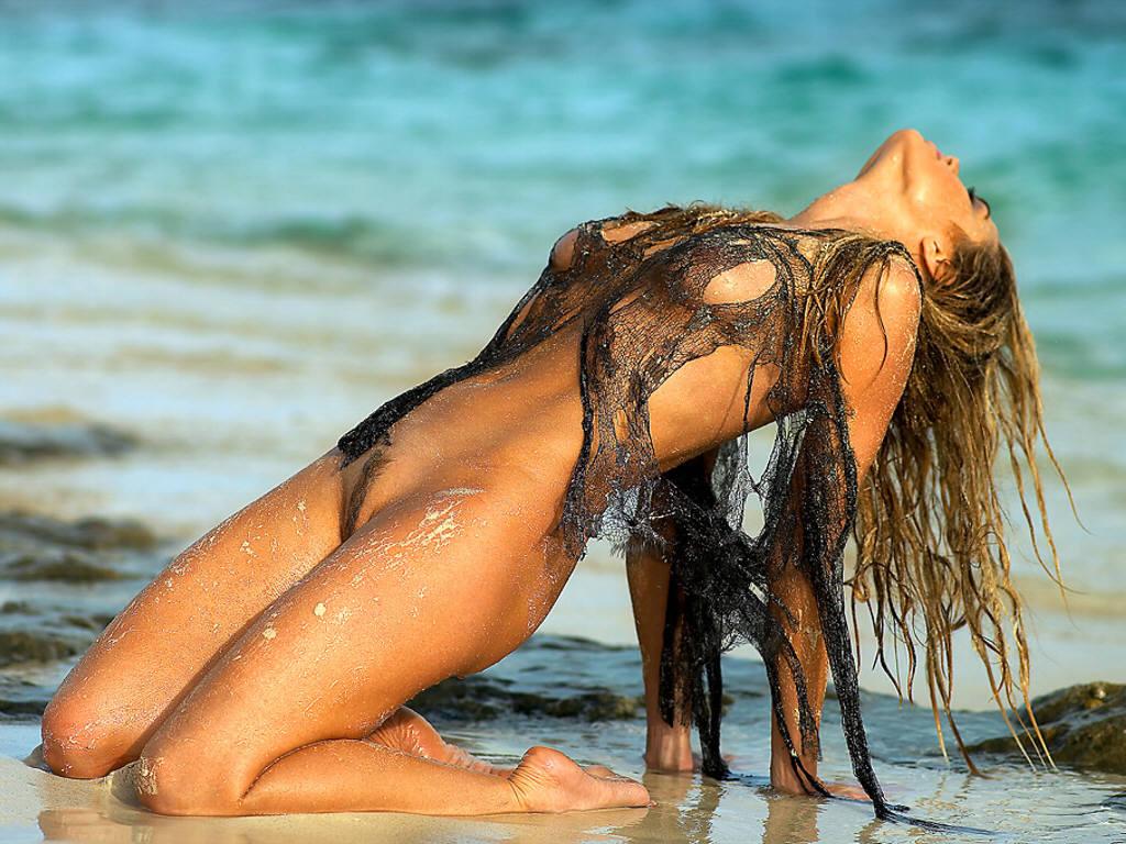 Celebrity Big Brother 2014 Denise Richards Website