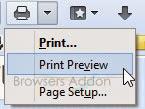 Print/Print Preview