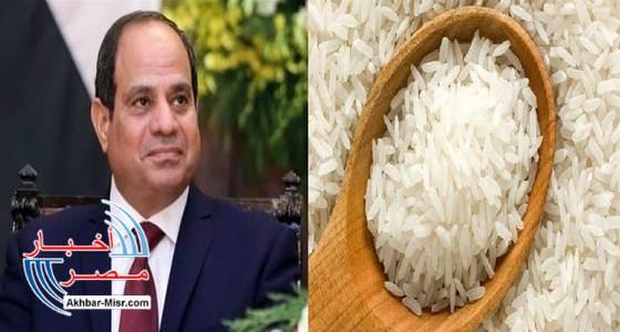 عاجل.. الرئيس السيسي يوافق على استيراد الأرز.. ويوجه بتفعيل منظومة الرقابة على الأسعار