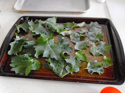 Kale Chips unoiled