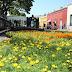 Este domingo abre al público la cuarta edición del Camino de Flores