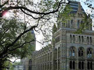 Edificio del Museo Historia Natural de Londres