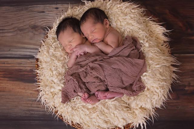 Mengenal Macam-macam Kembar