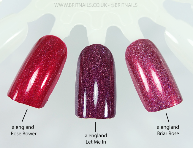 a england let me in, rose bower, briar rose comparison