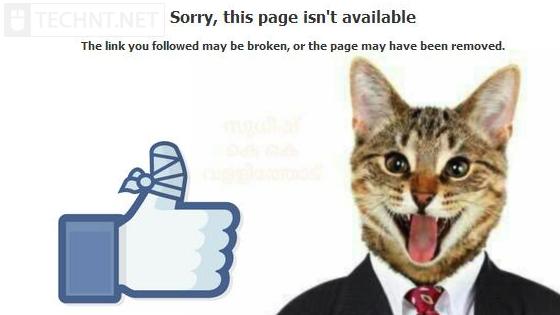 فيسبوك تقفل حسابات المستخدمين بسبب صورة لقط بزي رسمي - التقنية نت - technt.net