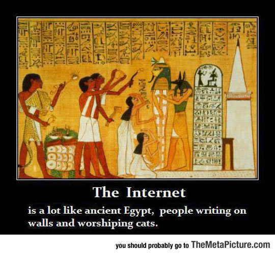 Funny Pictures About Egypt: She Who Seeks: Cat Worship In Ancient Egypt