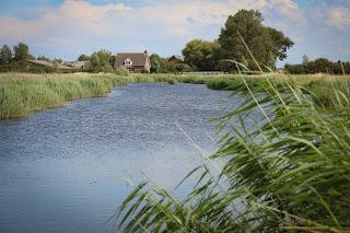 Angelurlaub Holland | Karpfenangeln