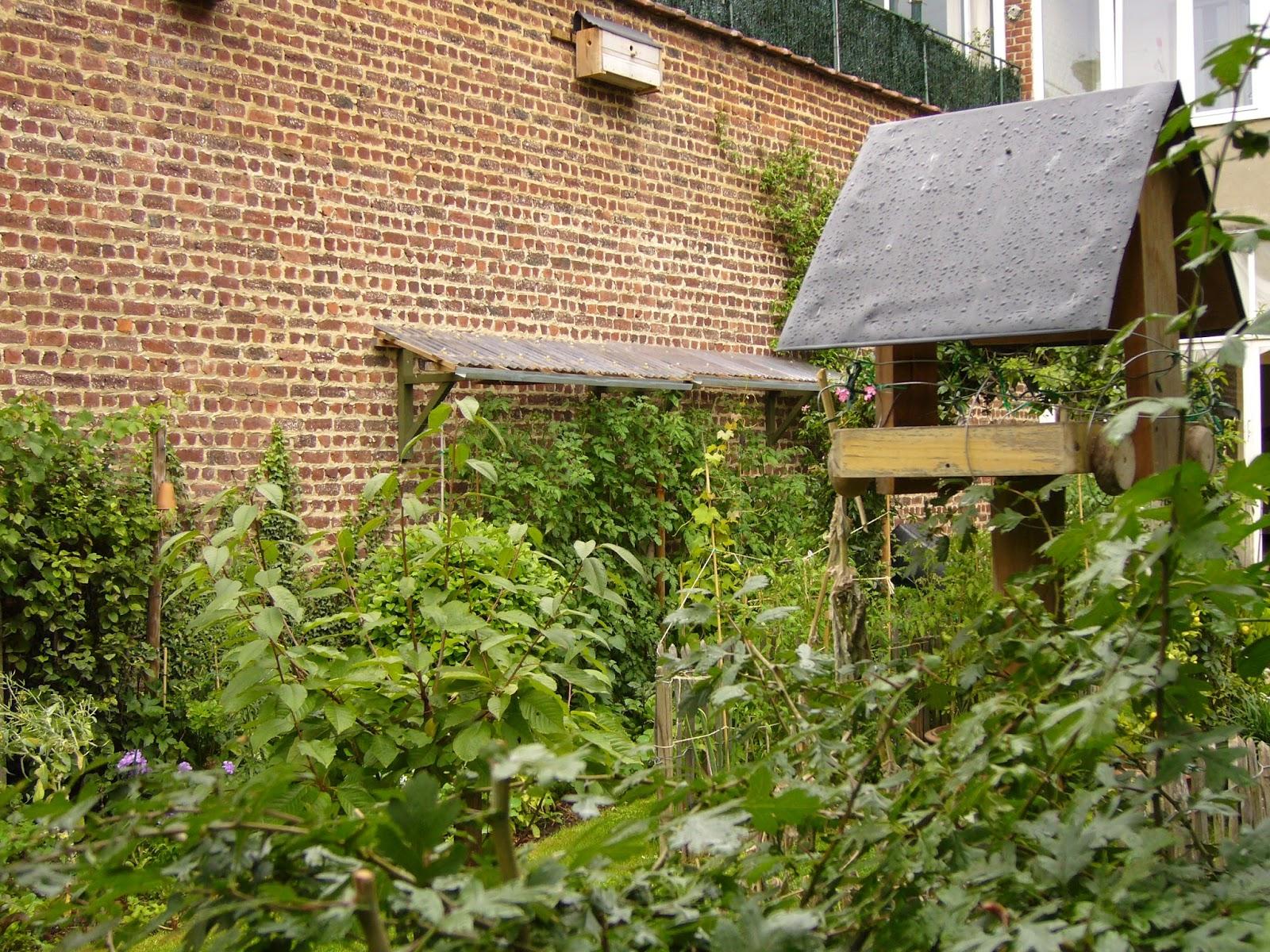 Jardin potager comestible partager un jardin de ville for Jardinier bruxelles