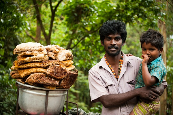 vendeur de miel ambulant kerala