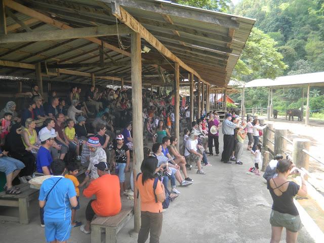 Público assistindo a apresentação dos elefantes - Mae Taeng Elephant Park - Parque de Elefantes na Tailândia