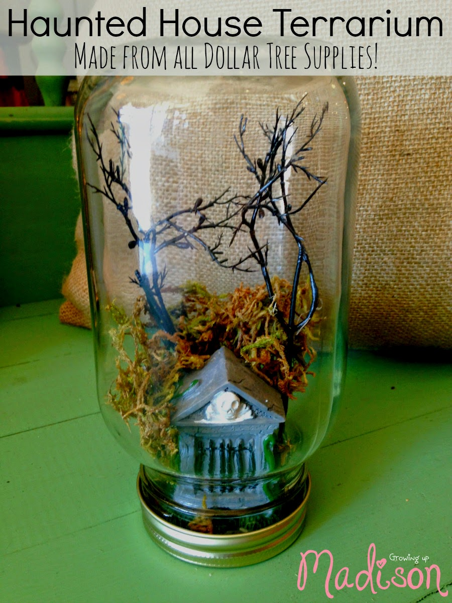 Halloween Haunted House Terrarium Annmarie John