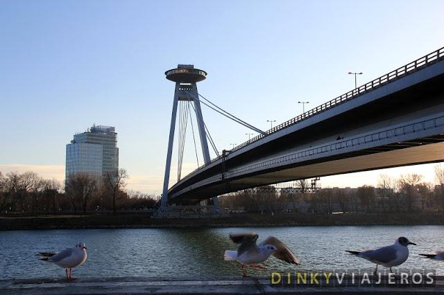 Puente SNP