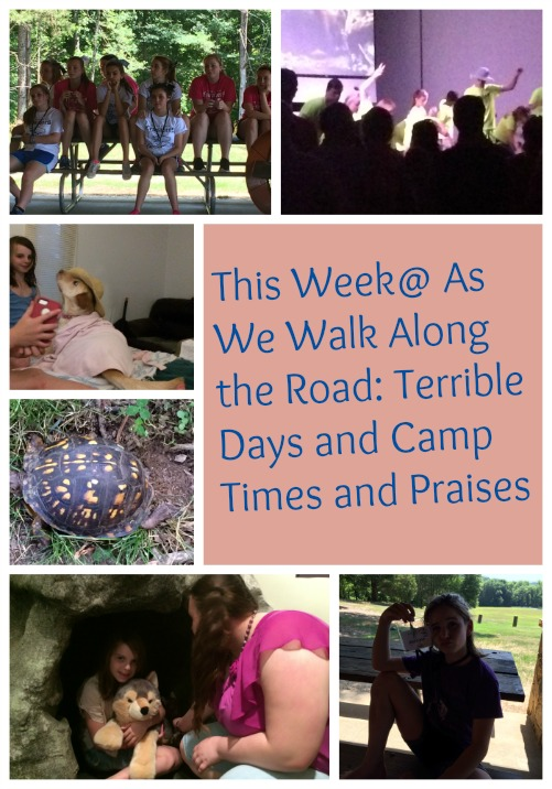 This Week@ As We Walk Along the Road
