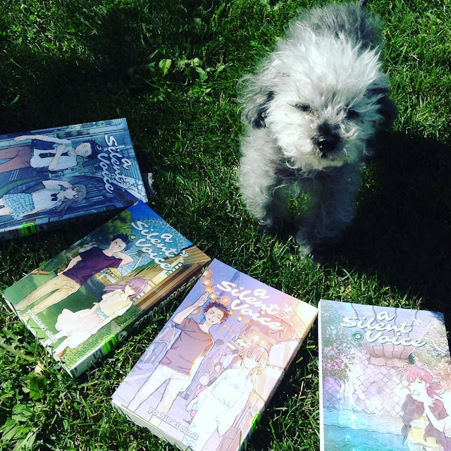 A fuzzy grey poodle, Murchie, stands on a patch of grass and squints up at the camera. Four volumes of A Silent Voice are arranged around him in a fan.