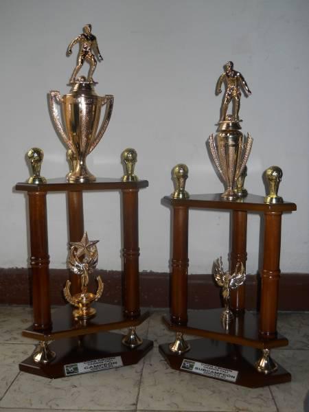 9da4a3fa73f80 Trofeos de futbol