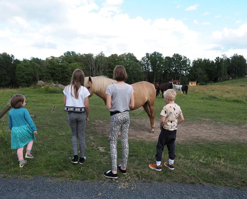 lapset ja hevoset