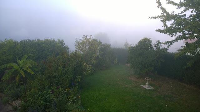 Blick in den Vorgarten bei Oktoberwetter (c) by Joachim Wenk