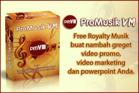 ProMusik VM