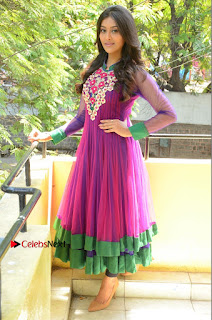 Actress Pooja Jhaveri Latest Stills in Purple Salwar Kameezt at Dwaraka Success Meet  0248.JPG