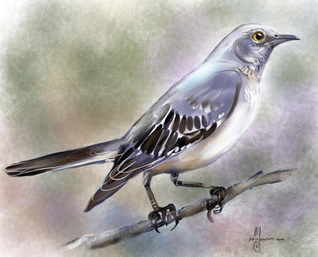 Northern Mockingbird  bird painting by Artmagenta