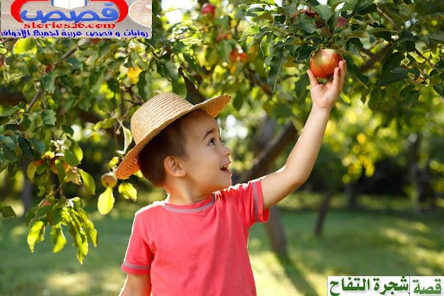 قصة قصيرة |  شجرة التفاح