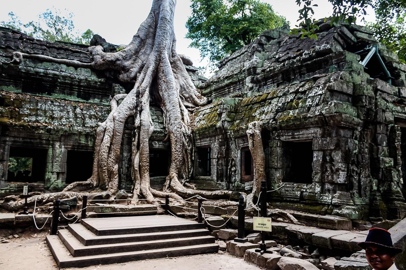 Ta Prohm, Cambodia HD Background