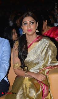 Actress Shriya Saran New Images in Silk Saree at Gautamiputra Satakarni Audio Launch  0030.jpg
