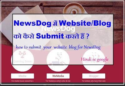 newsdog blogger Sumbition