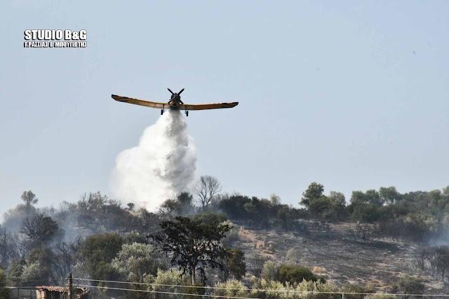 Εκκενώνεται οικισμός από μεγάλη πυρκαγιά στην Ανατολική Μάνη