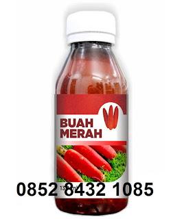 Jual khasiat manfaat kapsul sari buah merah hpai papua untuk kesehatan~ASLI agen resmi