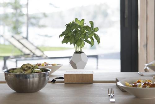 maceta flotante pequeña para centro de mesa