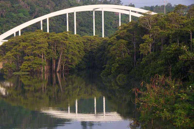 bridge, Kin, Okinawa, reflections, river, Okukubi