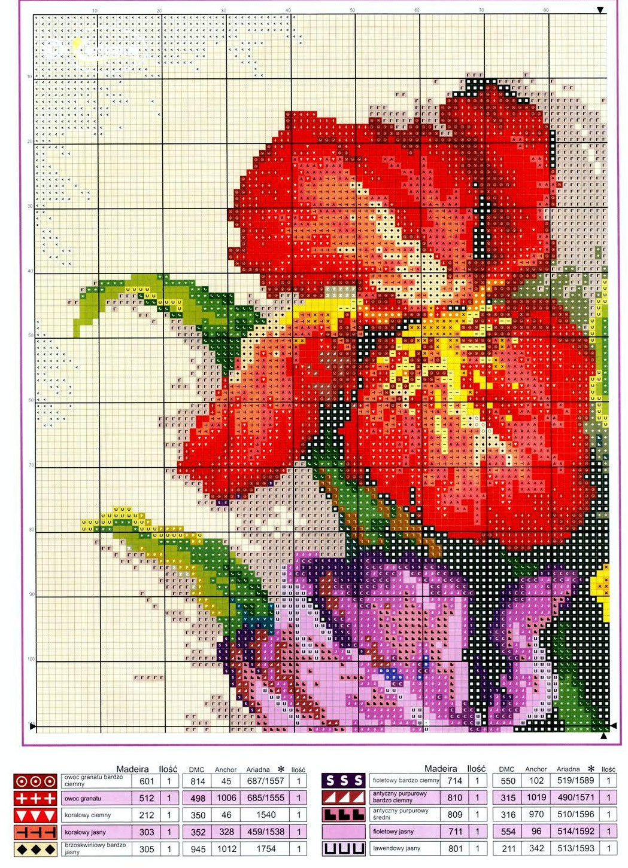 Graficos Punto De Cruz Gratis Flores 50