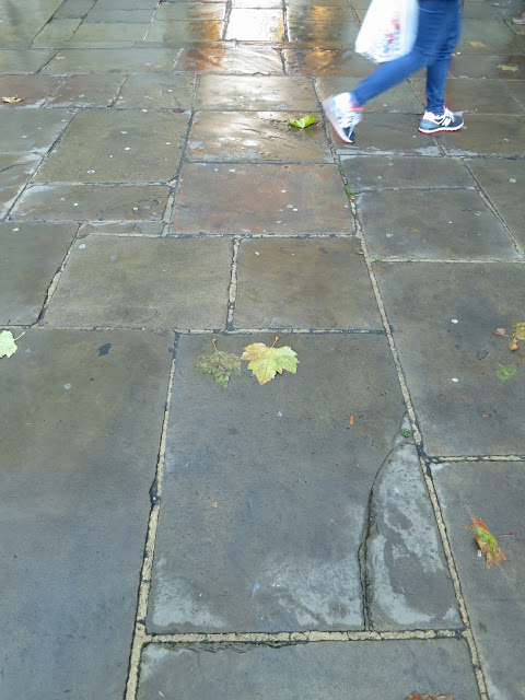 Leaves on paving stones (flags?) outside Ashmolean Museum, Oxford