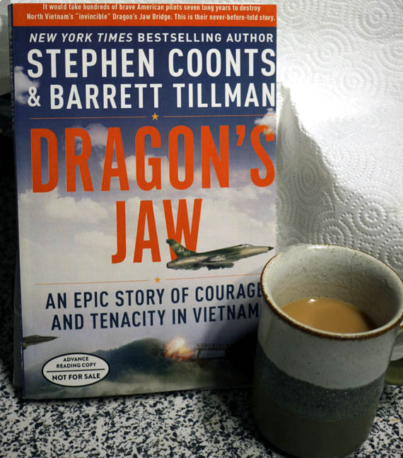 An Epic Story of Courage and Tenacity in Vietnam - Stephen Coonts and Barrett Tillman