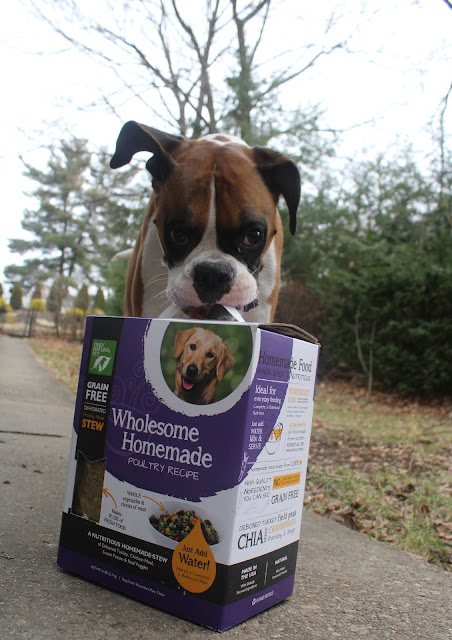 Natural Homemade Dog Food That Is Balanced And Complete